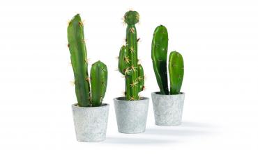Plante artificielle - Set...